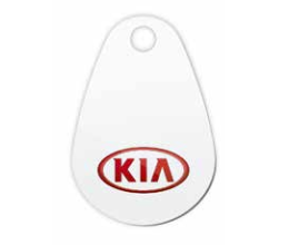 Charge card logo of Kia